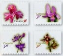 2010 Orchid definitives